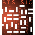 Logo BTS SIO final 1.1(135px).png